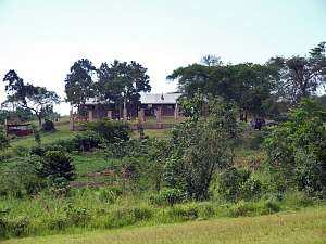 Rwabagabo School surrounded by lush green fields and trees
